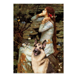 German Shepherd 9   -  Ophelia Seated Poster