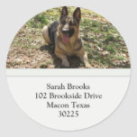 German Shepherd Address Labels Round Stickers