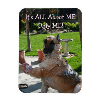 German Shepherd All About Me Magnet