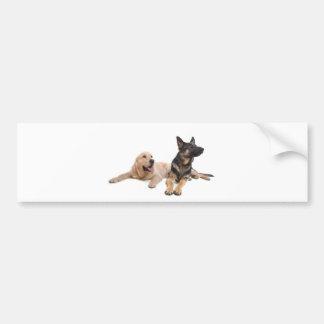 german shepherd and golden retriever bumper sticker