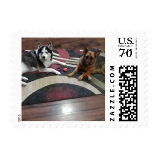 German Shepherd and Siberian Husky Love Postage