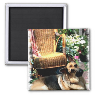 German Shepherd Art Gifts Magnet