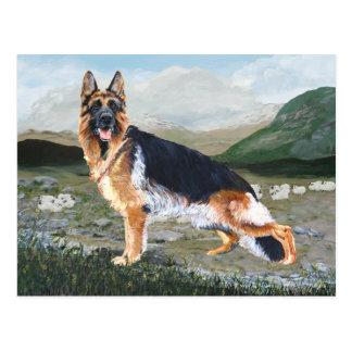 German Shepherd at Work Postcard