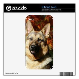 German Shepherd Autumn Leaves Skin For iPhone 4S
