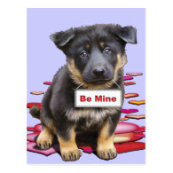 German Shepherd, Babe Post Card