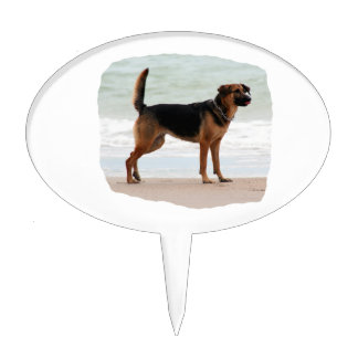 German Shepherd beach stand tongue out Cake Topper