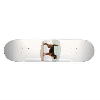 German Shepherd beach stand tongue out Skateboard Deck