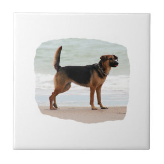 German Shepherd beach stand tongue out Small Square Tile