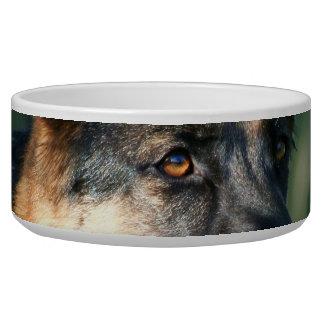 German Shepherd Bowl