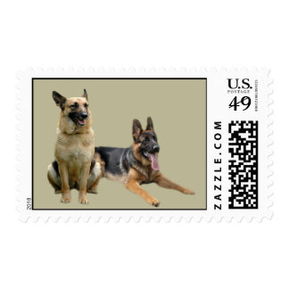 German Shepherd Buddies Postage Stamp