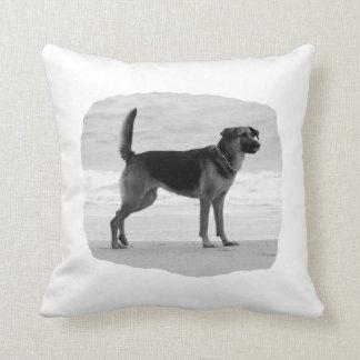 German Shepherd bw beach stand tongue out Throw Pillow