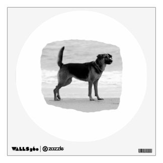 German Shepherd bw beach stand tongue out Wall Decals