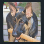"""German Shepherd by Shirley Taylor Bandana<br><div class=""""desc"""">German Shepherd bandana. Click on the customize button to add your text. Image can be rotated or re-sized.</div>"""