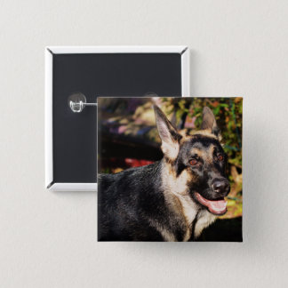 German Shepherd by Shirley Taylor Button