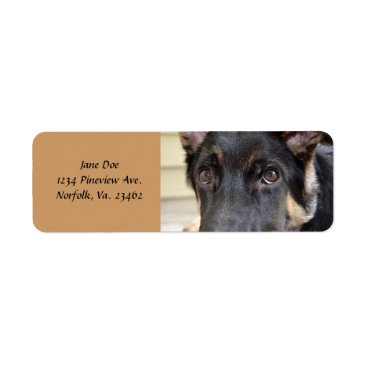 shirleytaylor German Shepherd by Shirley Taylor Label