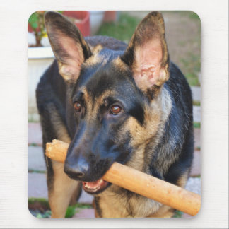 German Shepherd by Shirley Taylor Mouse Pad
