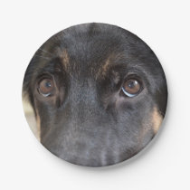German Shepherd by Shirley Taylor Paper Plate