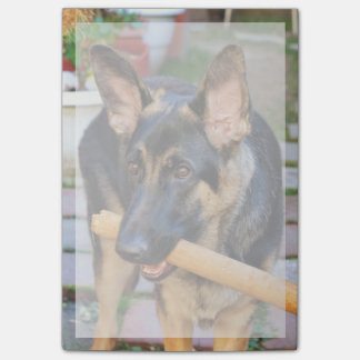 German Shepherd by Shirley Taylor Post-it® Notes