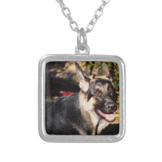 German Shepherd by Shirley Taylor Silver Plated Necklace