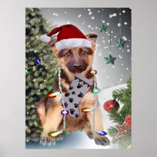 German Shepherd Christmas Lights Poster