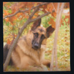 "German Shepherd Cloth Napkin<br><div class=""desc"">If you love the German Shepherd Dog don&#39;t be afraid to let everyone know it!  This beautiful photo of a German Shepherd livens up just about anything!  For the German Shepherd lover in your life,  even if that means you!</div>"