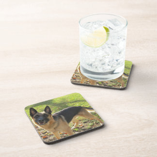 German Shepherd Coaster Set
