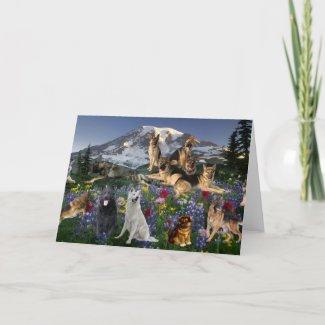 German Shepherd Country Card