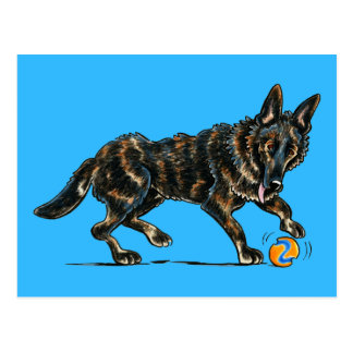German Shepherd Dax Postcard