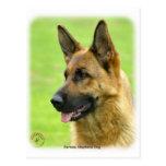 German Shepherd Dog 9B50D-20 Post Card