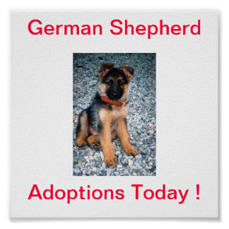 German Shepherd Dog Adoptions Today Sign Poster