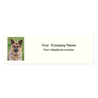 German Shepherd dog beautiful photo business card