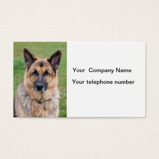 German Shepherd dog beautiful photo business card