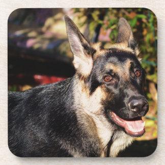 German Shepherd Dog Beverage Coaster