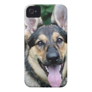 German Shepherd Dog Blackberry Bold Case