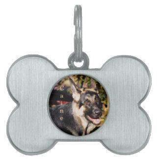 German Shepherd Dog by Shirley Taylor Pet ID Tag