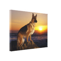 German shepherd dog canvas print