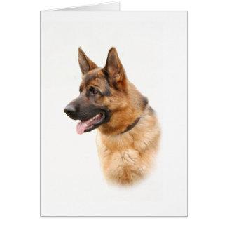 German shepherd dog greeting card