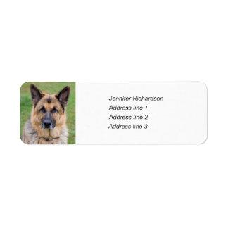 German Shepherd dog custom return address labels