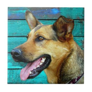 German Shepherd Dog Face Ceramic Tile