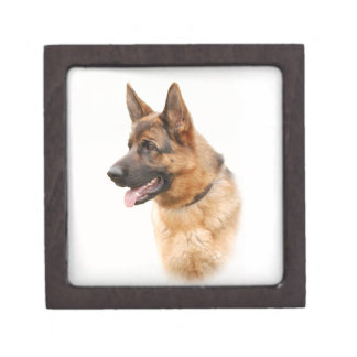 German shepherd dog gift box