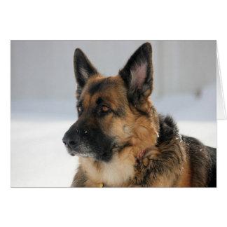 German Shepherd Dog in the Snow Note Card