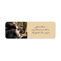 German Shepherd Dog Label