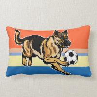 Decorative & Throw Pillows<