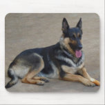 "German Shepherd Dog Mouse Pad<br><div class=""desc"">German Shepherd Dog Mouse Pad</div>"