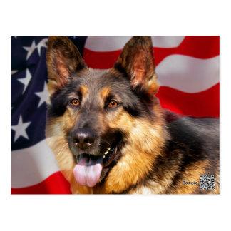 German shepherd Dog Patriot Red Blue White Postcard