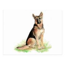 German Shepherd, Dog, Pet , Animal Postcard