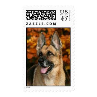 German Shepherd Dog postage