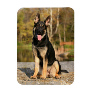 German Shepherd Dog puppy magnet