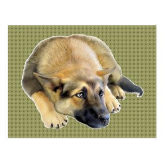 German Shepherd Dog Puppy Postcard