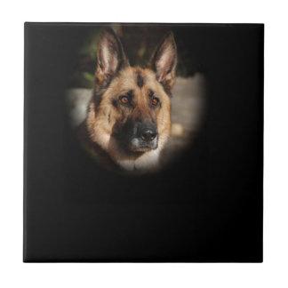 German Shepherd Dog Small Square Tile